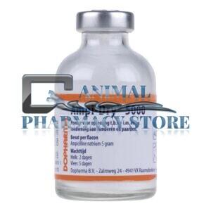 Buy Ampi-Dry 5000 Online