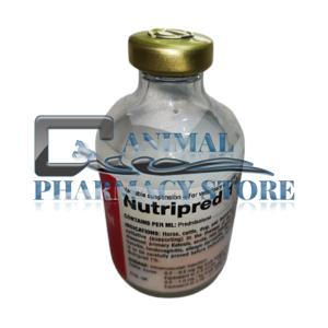 Buy Nutripred Online